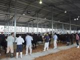 第171回南九州肥育牛共進会